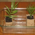 How To: Make Seedling Pots