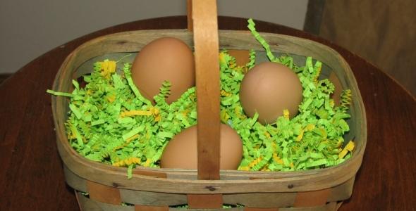 6 Alternatives To Easter Grass